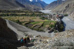 Descending into Kagbeni on the edge of Mustang. A true oasis.